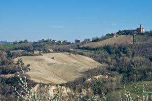 L'Agenzia Immobiliare Puzielli propone casolare con terreno in vendita nelle Marche