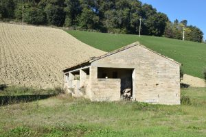 L'Agenzia Immobiliare Puzielli propone casa colonica da ristrutturare in vendita a Monterubbiano