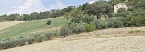 L'Agenzia Immobiliare Puzielli propone antico e prestigioso palazzo nobiliare di campagna in vendita a Fermo