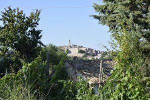 L'Agenzia Immobiliare Puzielli propone casolare da ristrutturare con terreno in vendita a Petritoli