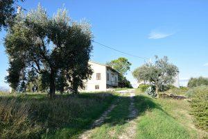 Proprietà immobiliare a Monte Giberto con vista panoramica