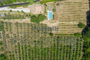 L'Agenzia Immobiliare Puzielliproponecasale con piscina in vendita a Montefiore dell'Aso (1)