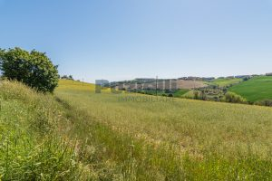 L'Agenzia Immobiliare Puzielliproponeterreno edificabile in vendita a Fermo (10)
