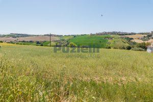 L'Agenzia Immobiliare Puzielliproponeterreno edificabile in vendita a Fermo (11)