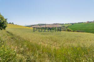 L'Agenzia Immobiliare Puzielliproponeterreno edificabile in vendita a Fermo (9)