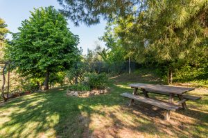 L'Agenzia Immobiliare Puzielliproponevilla con parco in vendita vicino Ascoli Piceno nelle Marche (17)