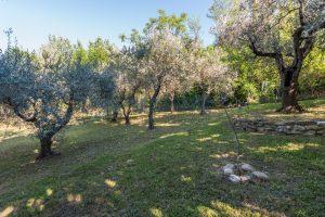 L'Agenzia Immobiliare Puzielliproponevilla con parco in vendita vicino Ascoli Piceno nelle Marche (29)