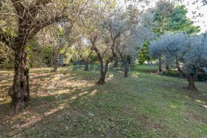 L'Agenzia Immobiliare Puzielliproponevilla con parco in vendita vicino Ascoli Piceno nelle Marche (30)