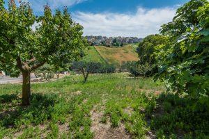 L'Agenzia Immobiliare Puzielli propone casa singola con giardino in vendita a Fermo (25)