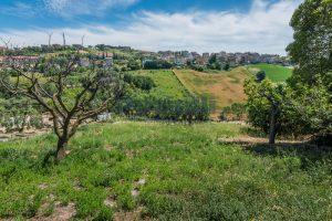 L'Agenzia Immobiliare Puzielli propone casa singola con giardino in vendita a Fermo (27)