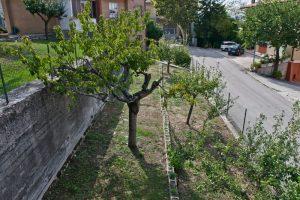 L'Agenzia Immobiliare Puzielli propone casa singola in vendita a Grottazzolina (3)