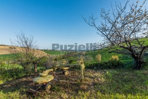 L'Agenzia Immobiliare Puzielliproponecasa di campagna con vista mare e terreno a Capodarco (24)