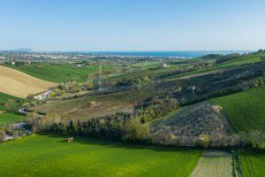 L'Agenzia Immobiliare Puzielliproponecasa di campagna con vista mare e terreno a Capodarco (5)