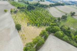L'Agenzia Immobiliare Puzielli propone casa di campagna vista panoramica (22)