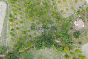 L'Agenzia Immobiliare Puzielli propone casa di campagna vista panoramica (29)