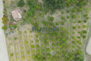 L'Agenzia Immobiliare Puzielli propone casa di campagna vista panoramica (30)